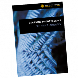Learning progressions numeracy