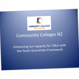 Enhancing our capacity for CBLA with the Youth Guarantee Framework cover image